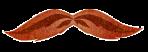 InspectorChopra_moustache